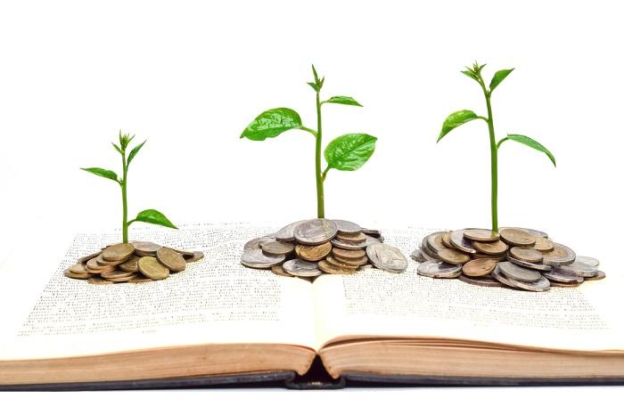 Plantas de dinero