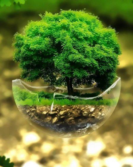 Conoce las consideraciones más importantes para la inversión en tecnología verde