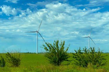 Conoce la importancia de los recursos renovables y su vínculo económico