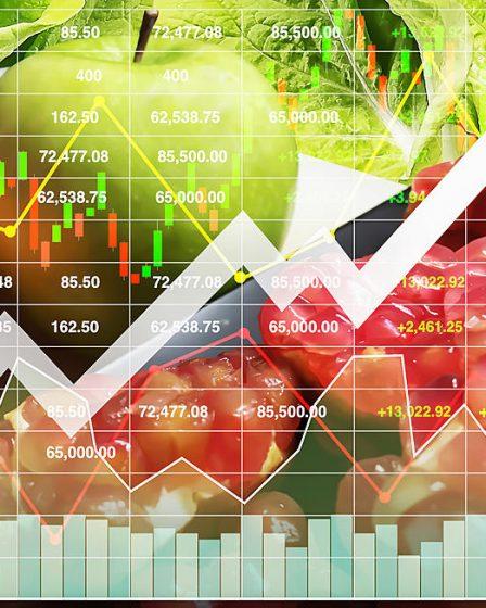 El impacto de la inversión ASG en el mercado de alimentos de origen vegetal